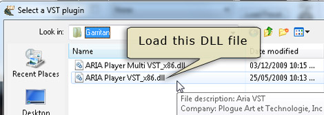 Find and load the ARIA Player VST .dll